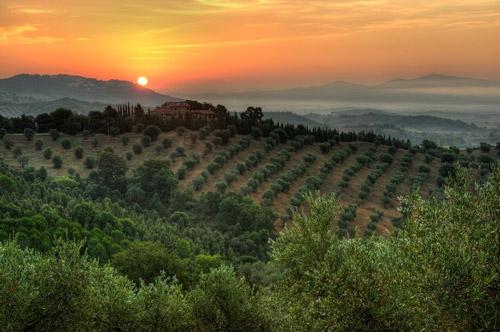 Montebelli Country Hotel and Agriturismo Caldana Maremma Tuscany Italy
