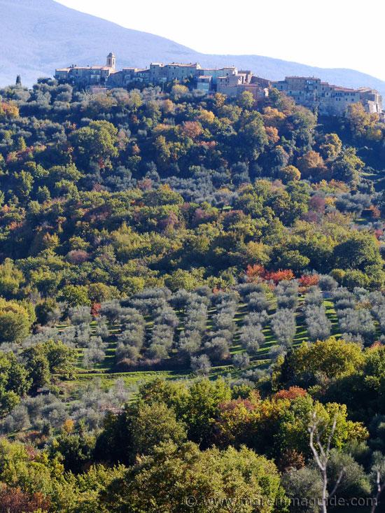 Montegiovi Tuscany Italy.