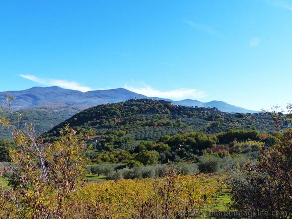 Montigiovi in Monte Amiata Maremma