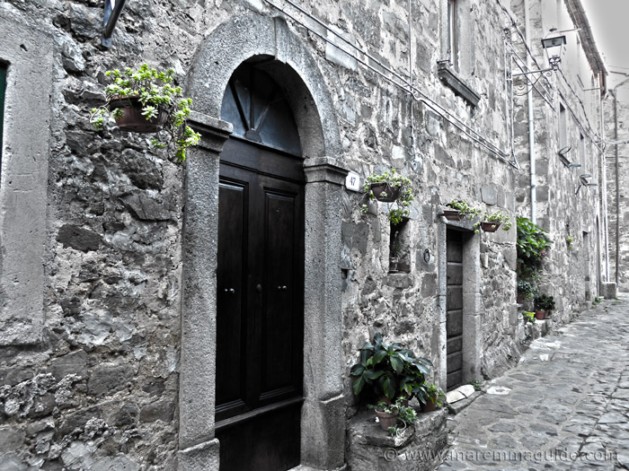 Doorways and hanging plants in Montelaterone Tuscany