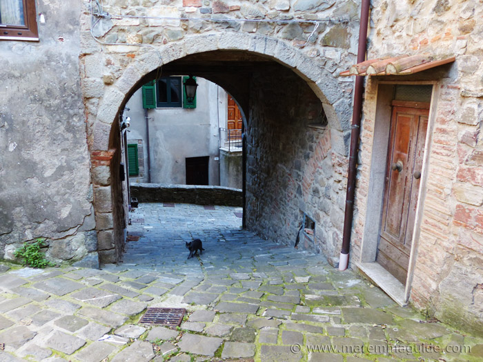 Black cat walking up Via delle Mura in Montelaterone Italy.