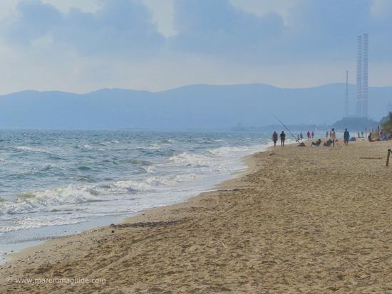 Mortelliccio spiaggia Riotorto Piombino Toscana