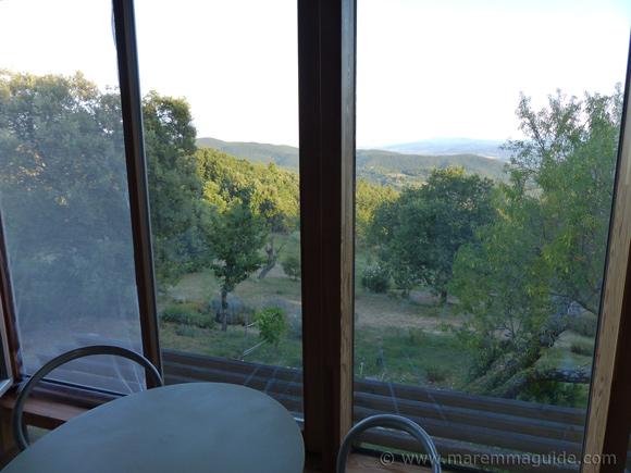 View of garden.