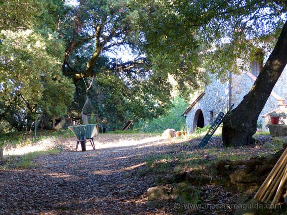 Old Tuscany farmhouse for sale in Maremma