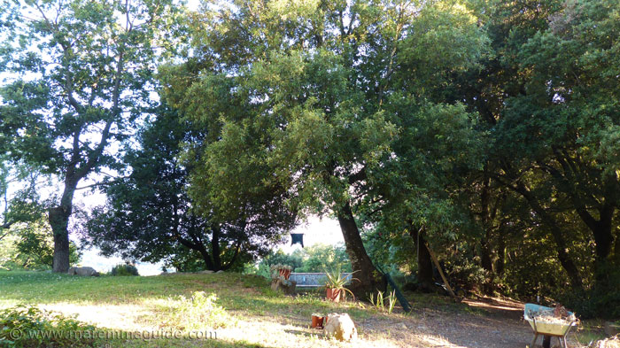 Washing line in Tuscany garden and wheelbarrow.
