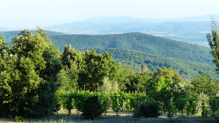Maremma's metalliferous hills