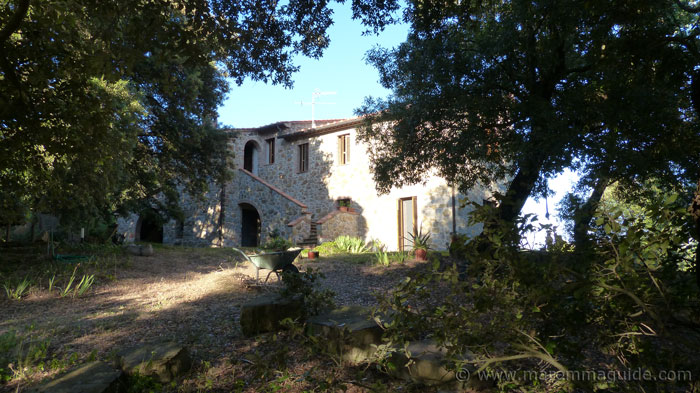 Maremma farmhouse for sale