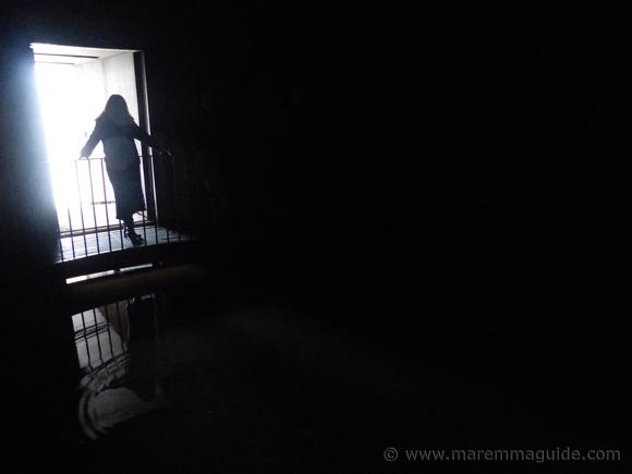 Olivo nel Cisternone Seggiano: inside the cistern.