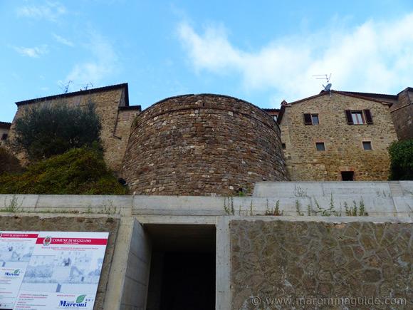 Olivo nel Cisternone Seggiano Tuscany
