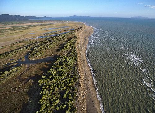 Ombrone River Delta, Maremma by Opaxir