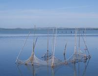Orbetello Lagoon