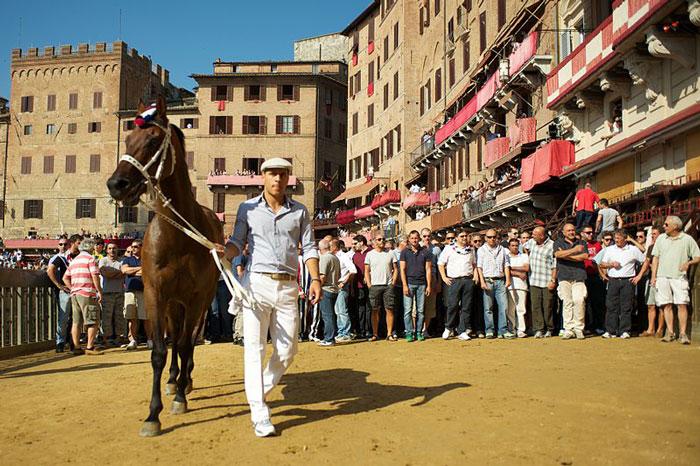 Barbaresco Palio di Siena.