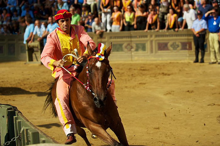 Palio di Siena jockey: Scompiglio 2016 winner of both races.