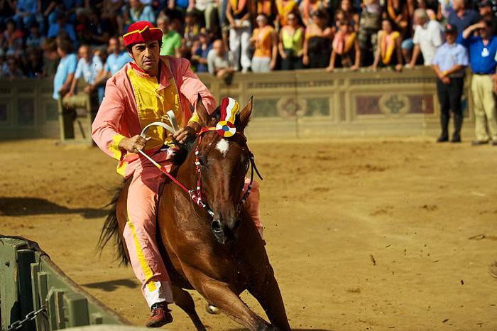Palio di Siena jockey: Scompiglio 2016 winner of both races.
