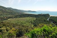 View from Torre di Collelungo of the Marina di Alberese in the Parco Regionale della Maremma
