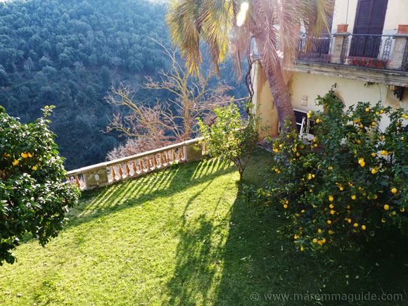 Garden with lemon trees in Pereta.