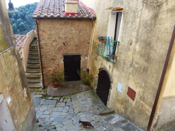 Vicola della Pergola Pereta Tuscany.
