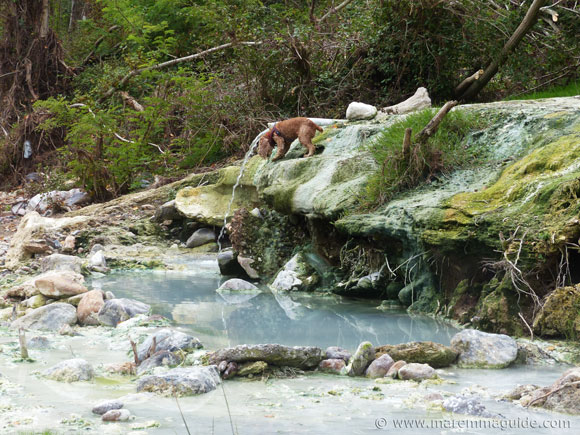 Petriolo hot thermal springs