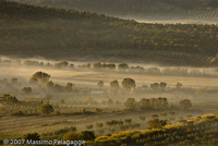 Pictures of Sunrises: sunrise with fog in Maremma, Toscana