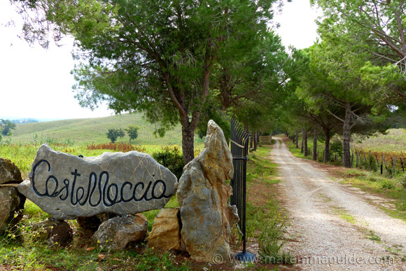 Podere Castellaccia winery in Maremma Tuscany