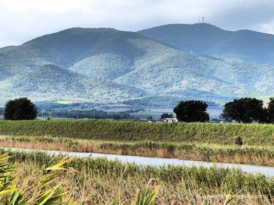 Poggio Ballone hills Maremma Tuscany