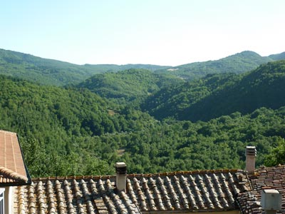 Poggio di Montieri: thewooded hills of Montieri, Maremma Tuscany Italy