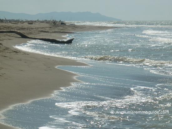 Principina a Mare beach Grosseto Maremma Tuscany Italy