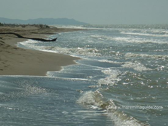 Principina a Mare beach Grosseto Maremma Tuscany