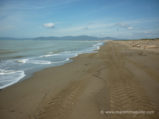 Principina a Mare Grosseto beach in March, Maremma Tuscany