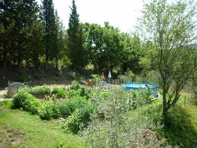 Properties for sale Tuscany: Maremma real estate