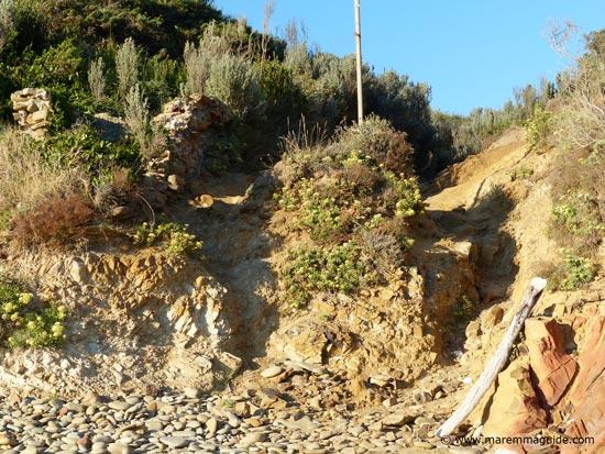 Punta Ala cove pathway onto the beach