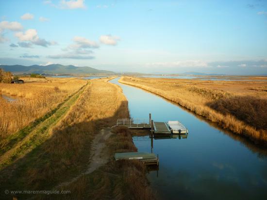Reserva Naturale della Diaccia Botrona boat