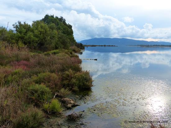 Riserva Naturale della Laguna di Orbetello Italy