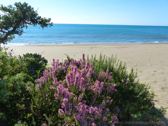 Riva del Sole beach Castiglione della Pescaia Tuscany in October.