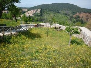 The grounds of La Rocca di Campiglia Marittima in Maremma Italy