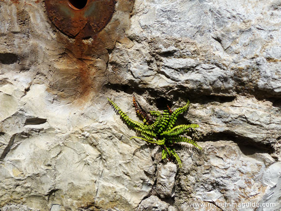 Roccalbegna fortress stone wall detail.