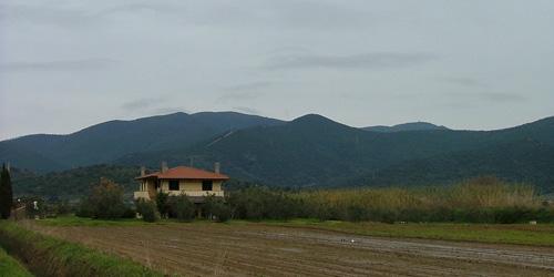 Bandite di Scarlino wooded hills behind Pian di Rocca, Maremma Tuscany Italy
