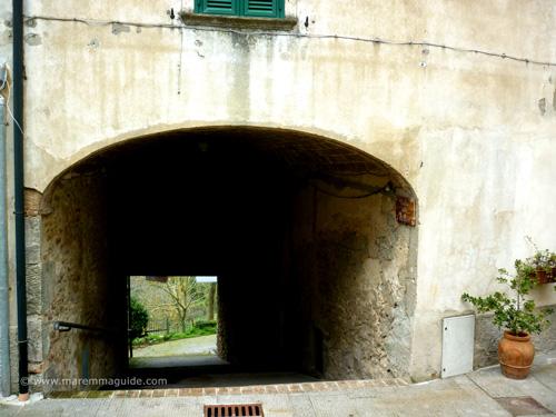 Viccola della Spiffero, Sasso Pisano Maremma