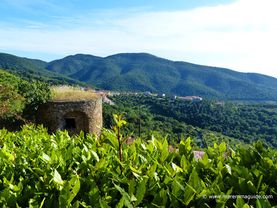 View from Scarlino castle Tuscany