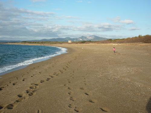 Spiaggia Torraccia Tuscany beaches Maremma italy