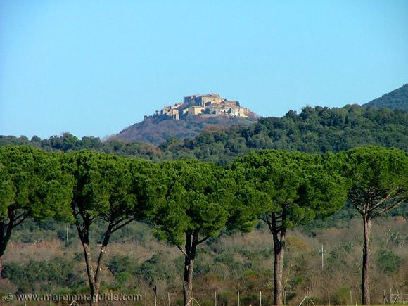 Sticciano in Maremma Tuscany Italy