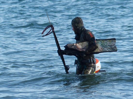Sub aqua fishing Maremma Tuscany
