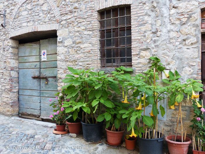 Street garden and door in Suvereto.