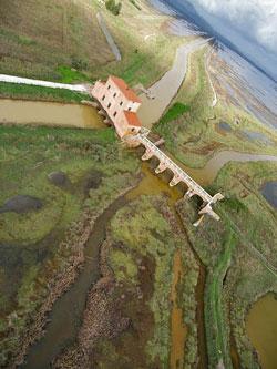 Diaccia Botrona Marsh, Castiglione della Pescaia Maremma