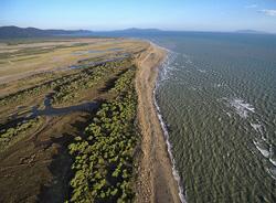 Ombrone River Delta, Maremma