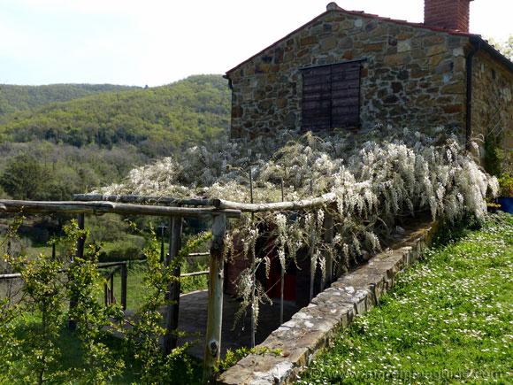 Tuscany holiday home.