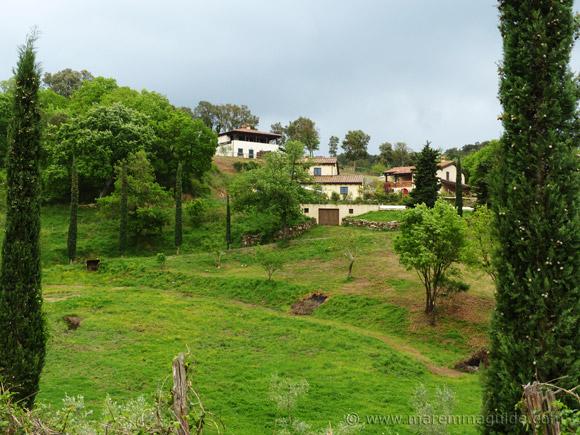 Poggio La Croce Scarlino Maremma Tuscany