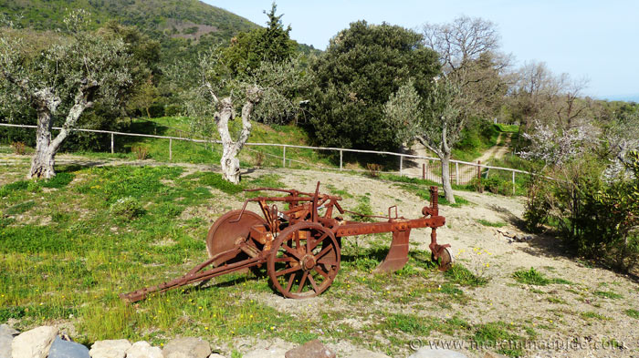 Old Tuscany farm machinery.