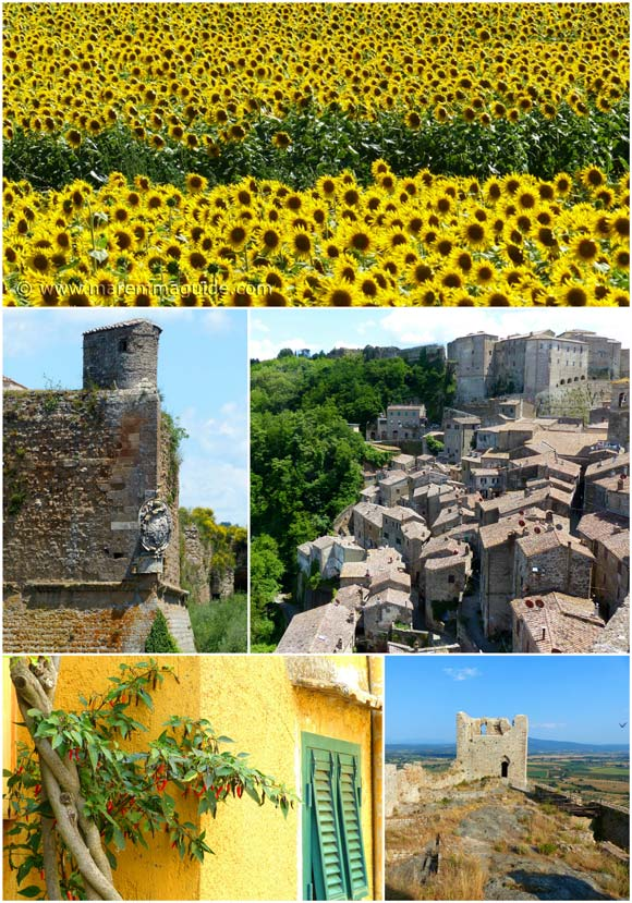 Tuscany day tour in Maremma Italy: full and half day sightseeing.