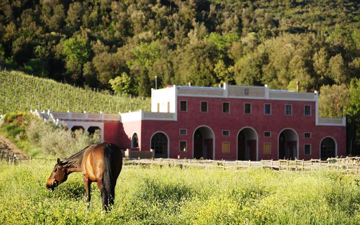 Luxury holiday villa in Maremma Tuscany.